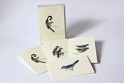 Steven M. Lewers & Associates Peterson Bird Notecard Assortment III (2 each of 4 styles)