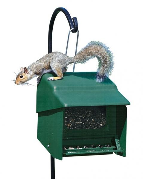 Homestead Super Stop-A-Squirrel Bird Feeder