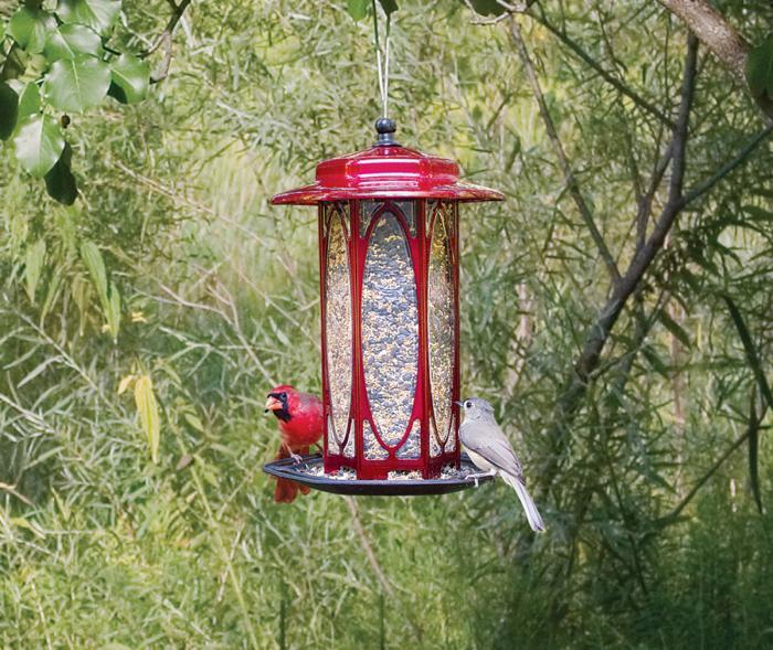 Homestead Long Stem Scarlet Rose Bird Feeder