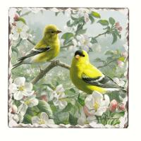 Counter Art Goldfinches Number 1 Single Tumbled Tile Coaster