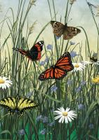 Tree Free Greetings Butterfly Meadow Blank