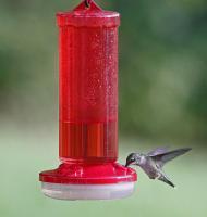 Hiatt Manufacturing Hummingbird Feeder Starter Kit