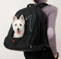 Pet at Work  Pet Travel System