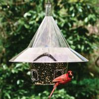 Arundale Mandarin Squirrel Proof Bird Feeder