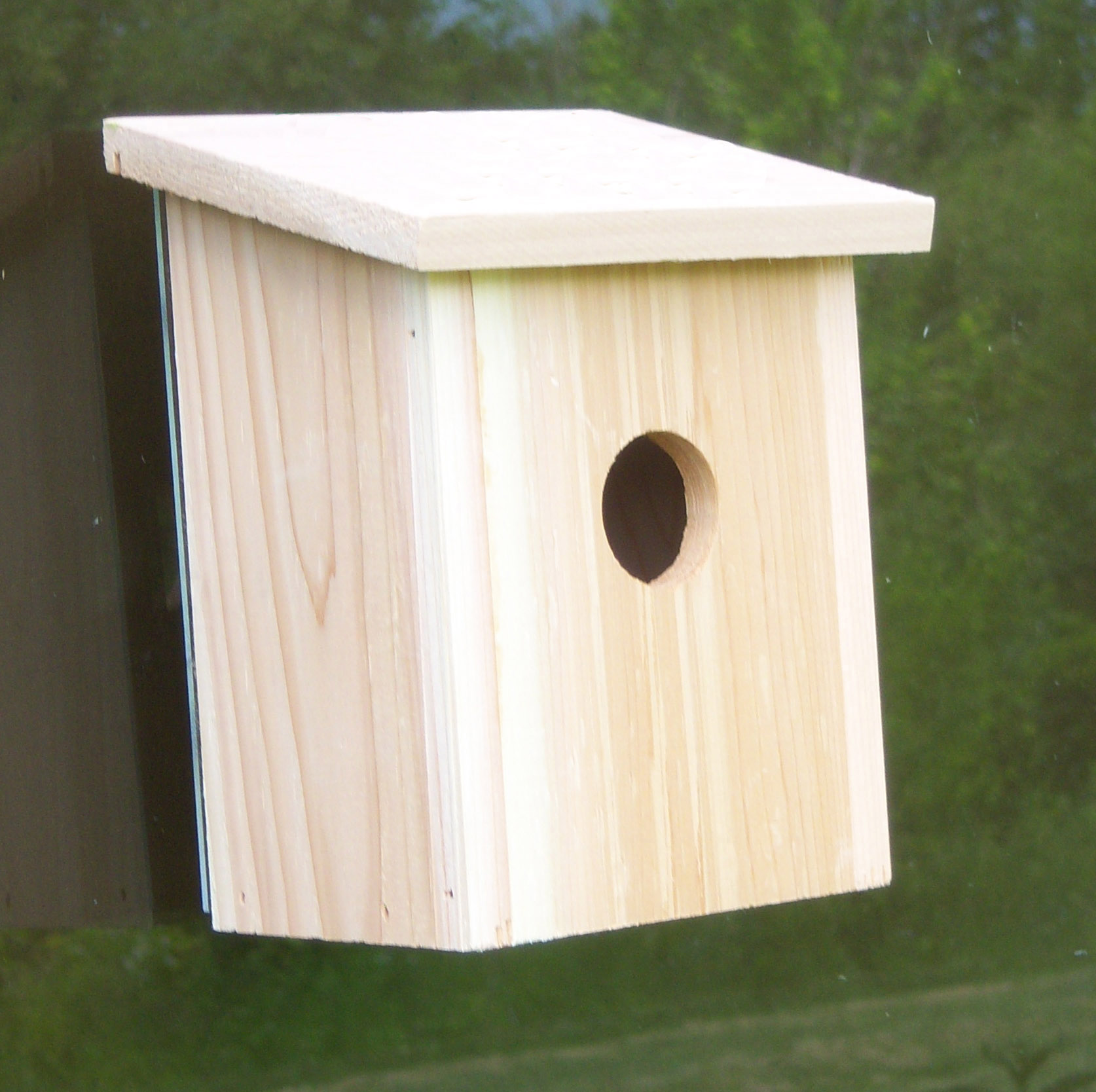Window bird house - Songbird Essentials Nest View Bird House