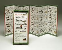 Steven M. Lewers & Associates Sibley's Ducks Eastern North America