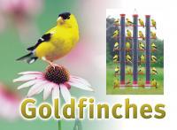 Songbird Essentials Goldfinch Sign