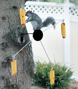 Squirrel Houses & Feeders by Homestead