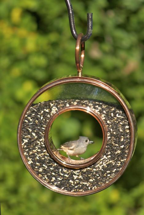 Good Directions Fly-Thru Circle Bird Feeder, Venetian Bronze