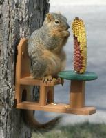 Songbird Essentials Recycled Poly Squirrel Table & Chair