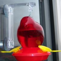 Songbird Essentials Red Bird Window Hummingbird Bird Feeder