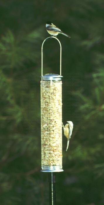 Aspects Medium Peanut Silo Bird Feeder