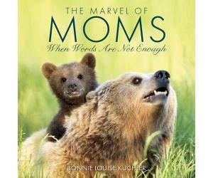 Children's Books by Willow Creek Press