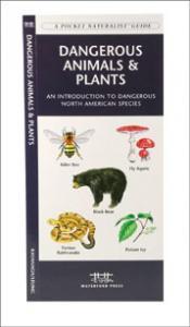 Pocket Naturalist Geology