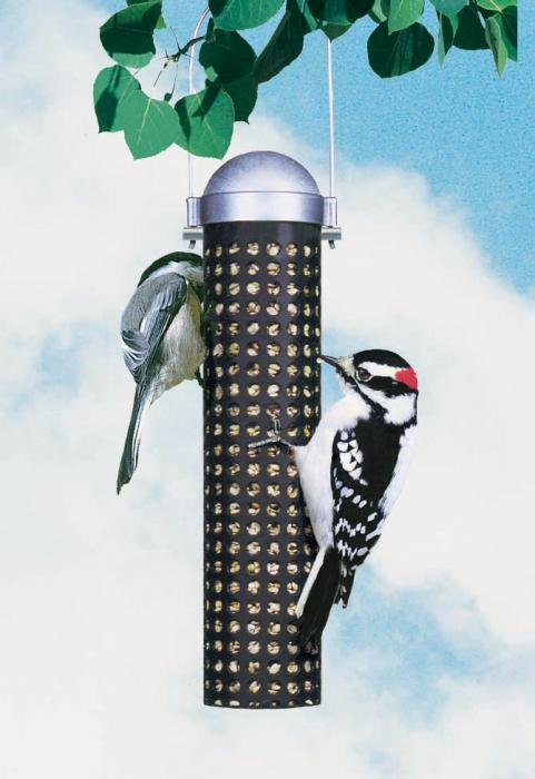 Perky Pet Sunflower and Peanut Tube Bird Feeder