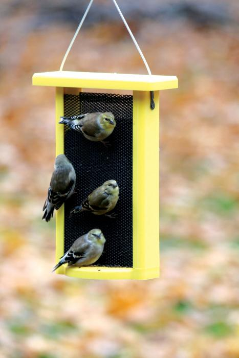 Bird's Choice 1.5 Qt. Yellow Recycled Magnet Mesh Finch Bird Feeder
