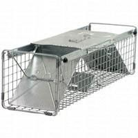 Havahart Large Squirrel Trap