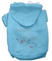 Snowman's Best Friend Rhinestone Dog Hoodie Baby Blue/Extra Small