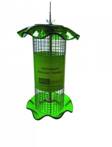 Bird's Choice 1 Quart Sunflower Forever Bird Feeder