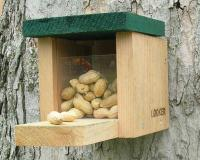 Songbird Essentials Squirrel Snack Box
