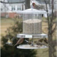 All Weather Feeder Clear 6 Quart Feeder