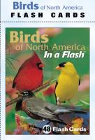 Impact Photographics Flash Cards Birds North American