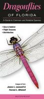 Quick Reference Publishing Dragonflies of Florida