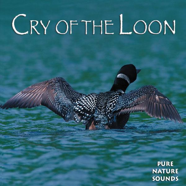 Naturescapes Music Cry of the Loon