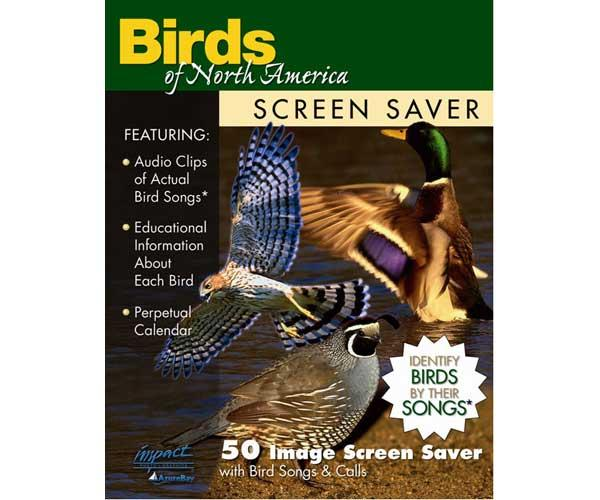 Impact Photographics Screen Saver Birds of North America
