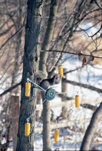 Heritage Farms Squirrel Go Round - Medallion