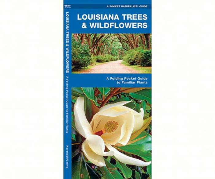 Waterford Louisiana Trees & Wildflowers