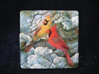 Songbird Essentials Magnet, Fire in the Snow/10 Pack
