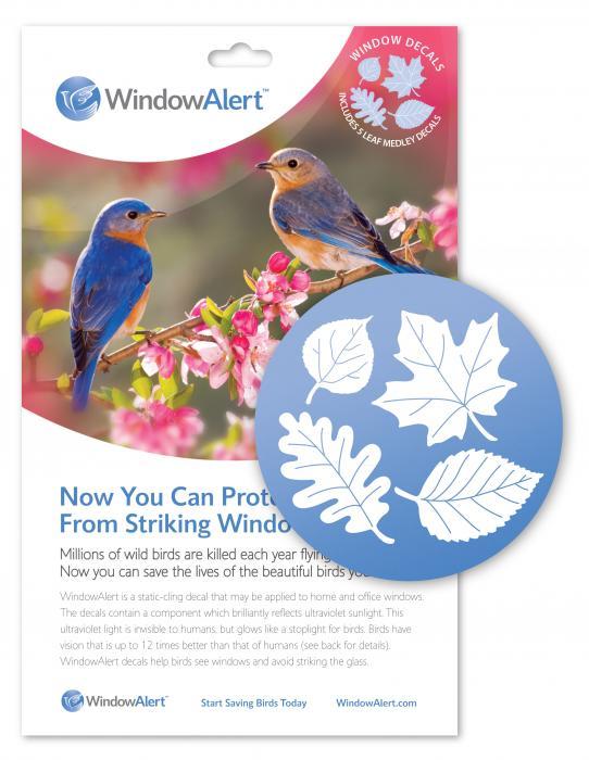 Window Alert Leaf Medley Decal
