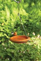 Ancient Graffiti BirdBath Spice Round Hanging
