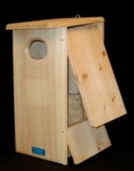 Wood Duck/Hooded Merganser House