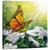 Tree Free Greetings Rays of Light Art Plaque