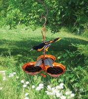 Songbird Essentials Copper Triple Cup Jelly Oriole Bird Feeder