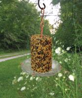 Songbird Essentials Seed Cylinder Tray Bird Feeder