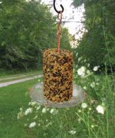 Songbird Essentials Seed Cylinder Tray Bird Feeder