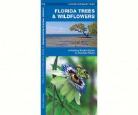 Waterford Florida Trees & Wildflowers