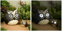 Smart Solar Solar Owl Accent Set