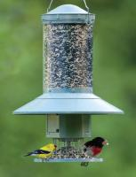 Wingscapes AutoFeeder Tube Bird Feeder