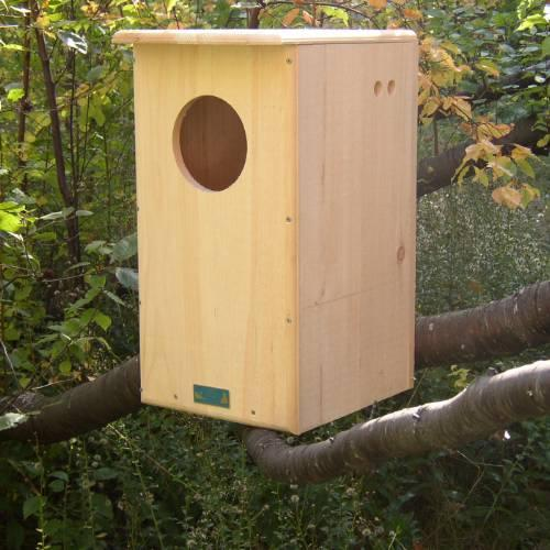 Barred Owl House, Unassembled with Predrilled Holes