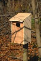 Heartwood Wood Duck Joy Box Birdhouse