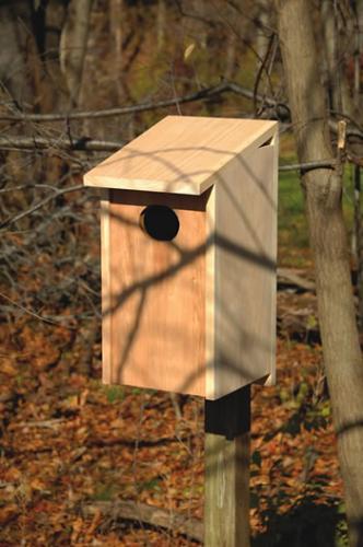 Heartwood Wood Duck Joy Box Birdhouse
