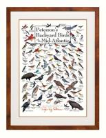 Steven M. Lewers & Associates Peterson's Backyard Birds of Mid-Atlantic Poster