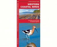 Waterford Western Coastal Birds