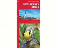 Waterford New Jersey Birds