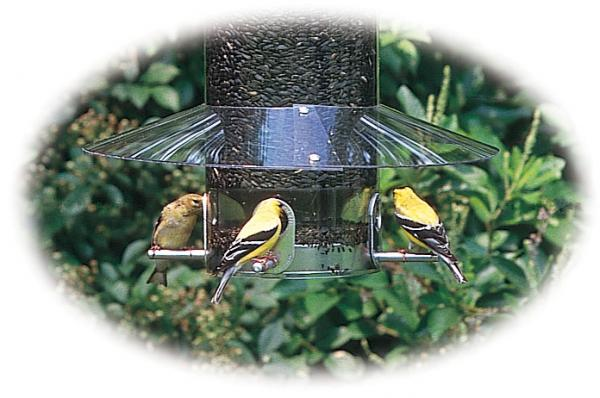 Birds Choice Classic Weather Guard