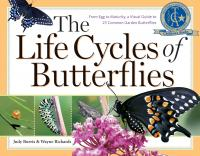 Workman Publishing The Life Cycles of Butterflies